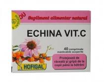 Echina Vitamina C 60 comprimate