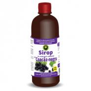 Hypericum Sirop Coacaz negru fara zahar 500 ml