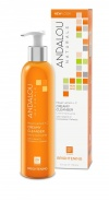 Andalou 25101 Meyer Lemon +C Creamy Cleanser 178 ml
